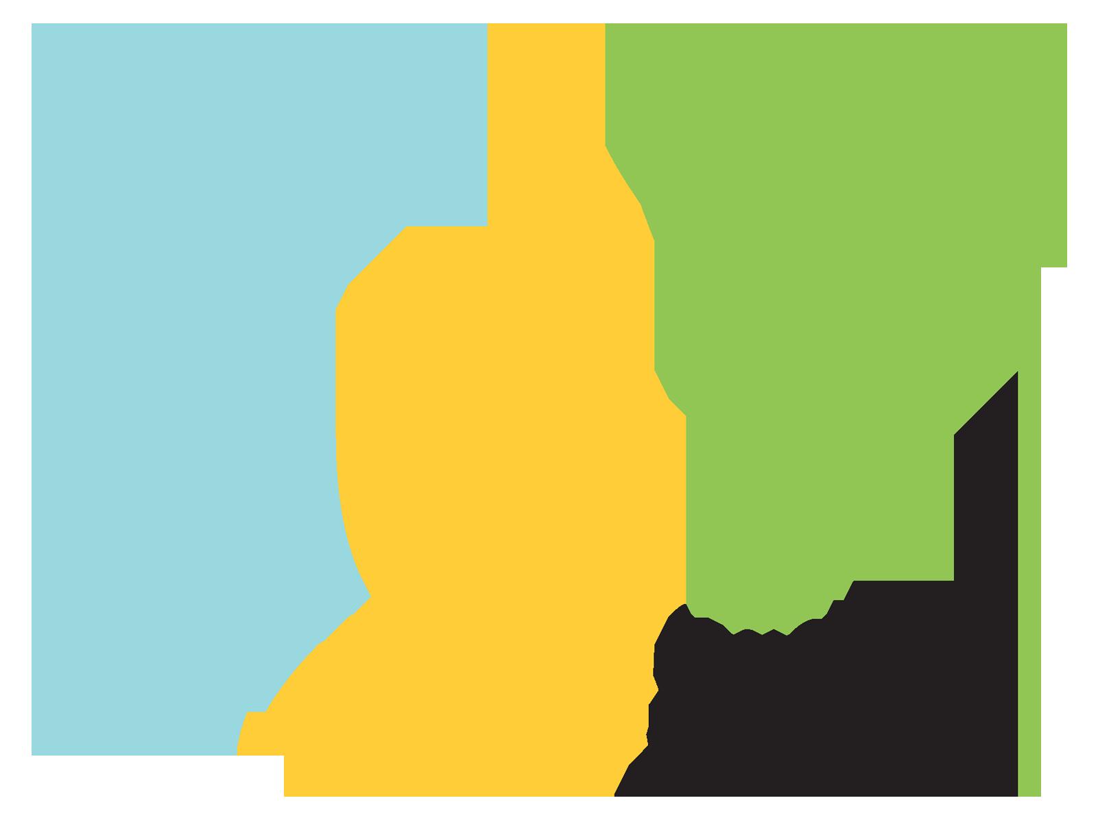 dyf_icon